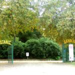 colac-botanical-gardens-1