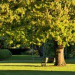 colac-botanical-gardens-2